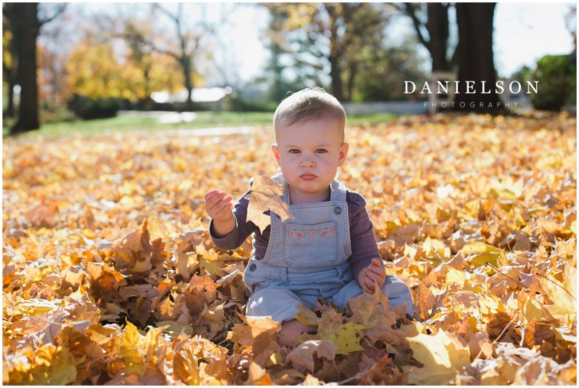 Danielson Photography, Iowa City Photographer, Iowa City family photographer, West Branch, fall family pictures