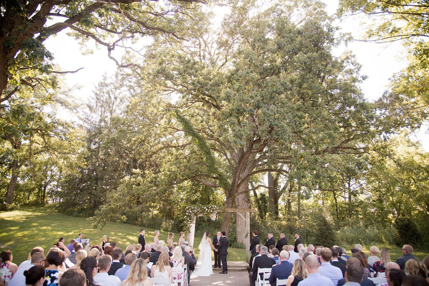Outdoor summer ceremony under a giant oak tree at Rapid Creek Cidery in Iowa City.